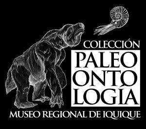 Logo Colección PALEO MRI